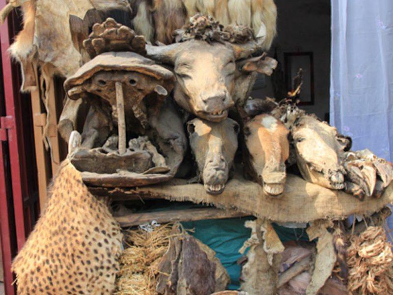 Benin,africa,voodoo,religion