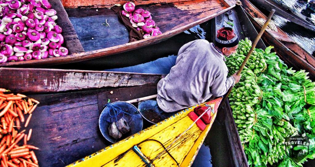 kashmir,srinigar,india,market,floating,Travel Photos