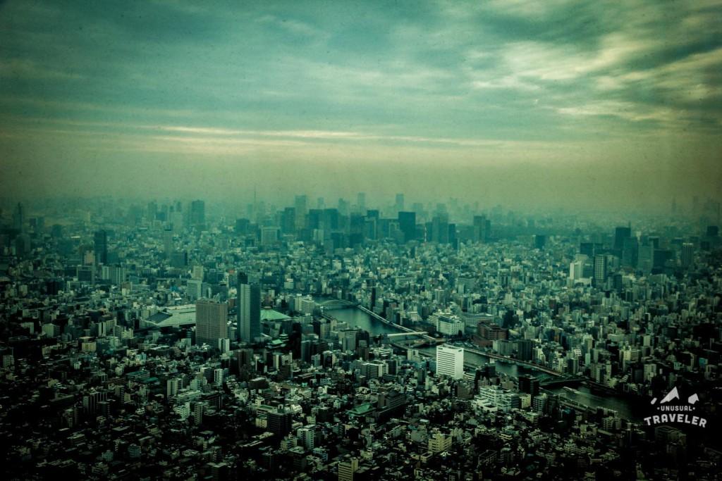 tokyo,japan,view,cityview,tokyo three,Travel Photos