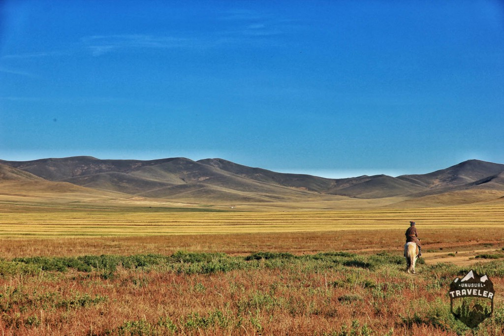 An old Woman on her horse out on the steps in Mongolia. #Mongolia , #Landscape , #horse