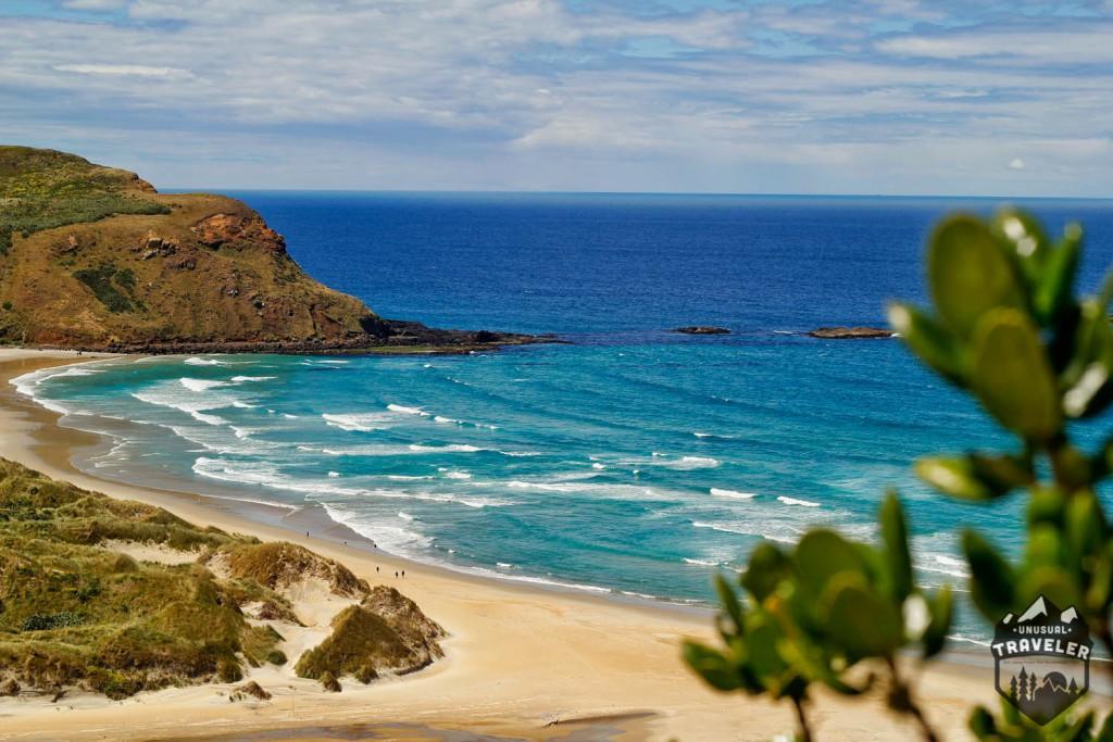 #New_zealand #Dunedin #landscape #beach
