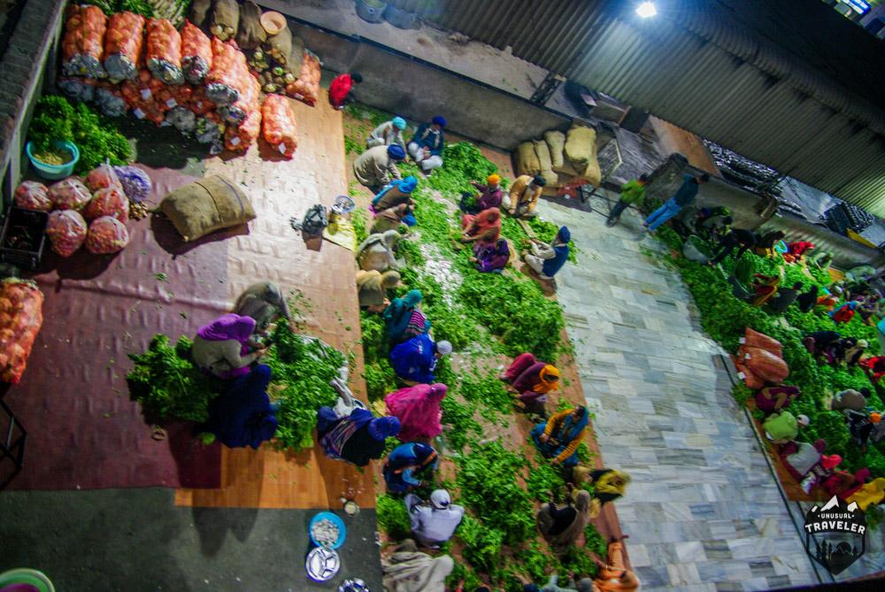 Volunteers peeling vegetables in the Golden Temple