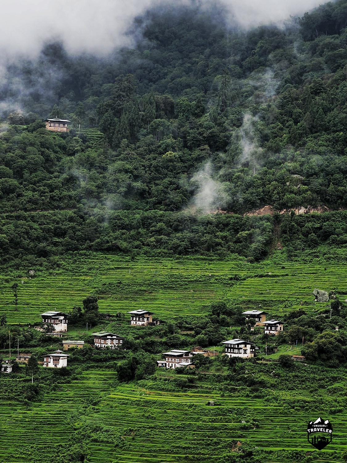A normal village in Bhutan. So pure and green.