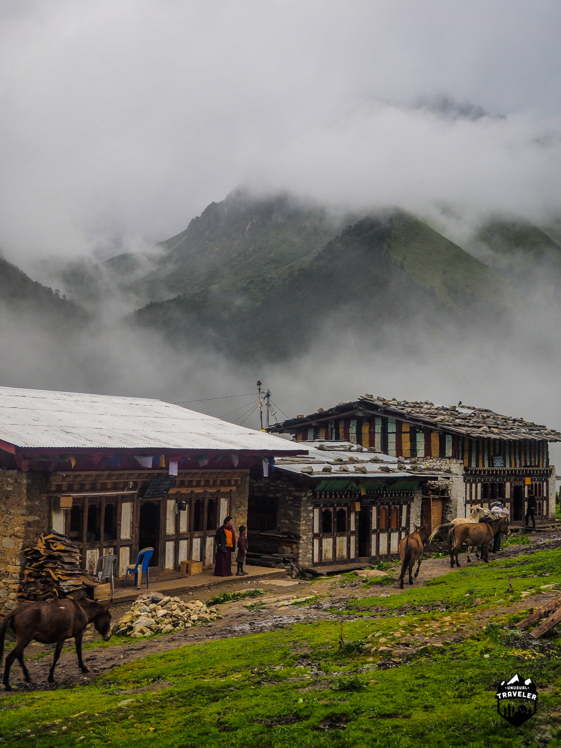 In far north Bhutan, here in Laya is the traffic by horses, no cars up here. The 3 buildings are all local bars