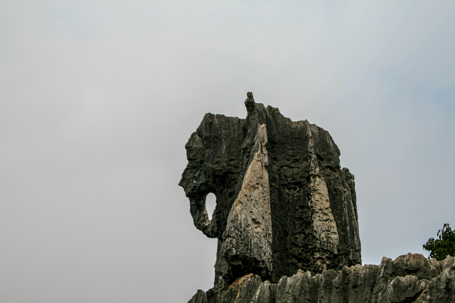The Elephant Rock. One of the most famous rock formations