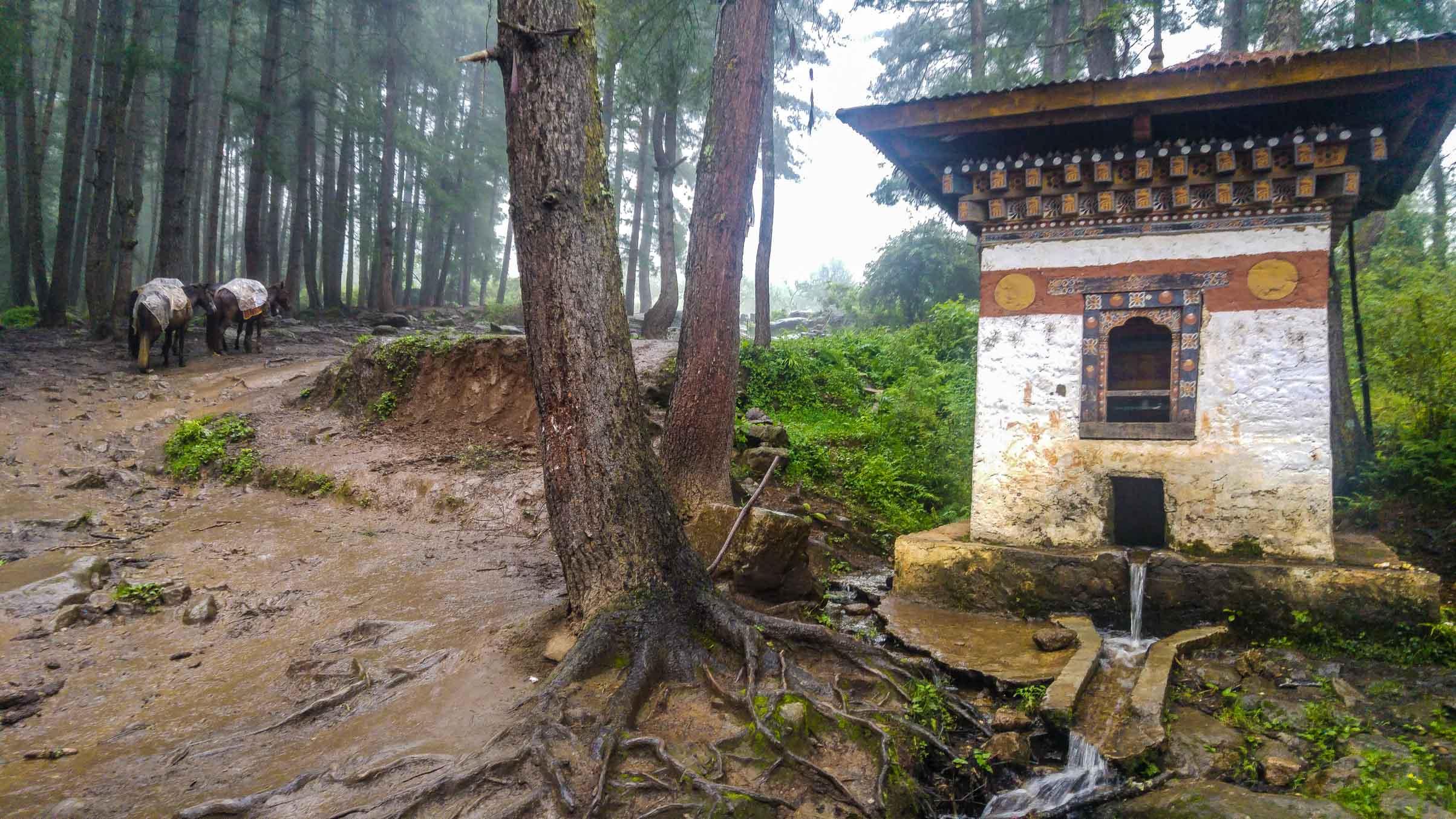 Bhutan Hike guide