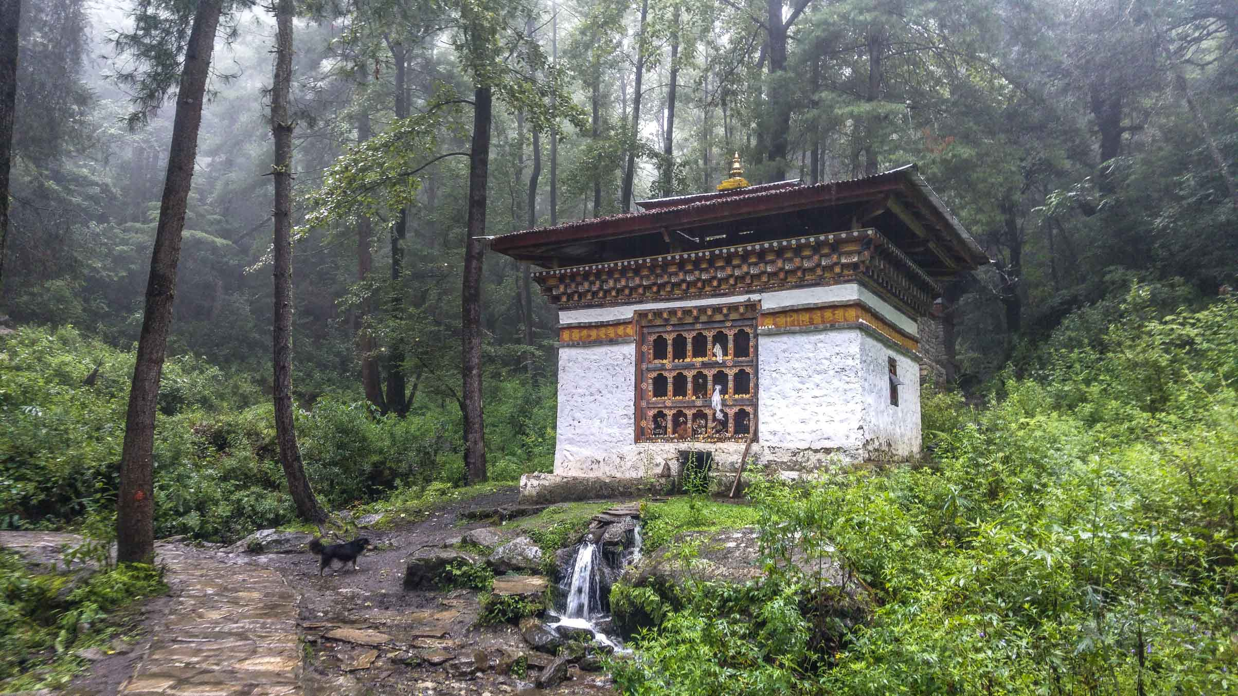 on the hike to Tiger Nest Monastery in Bhutan