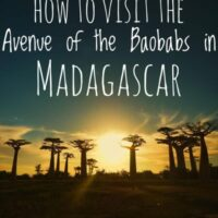 Travel guide to Avenue of the Baobabs is one of the most famous landmarks in Africa, how to visit this famous place in Madagascar.