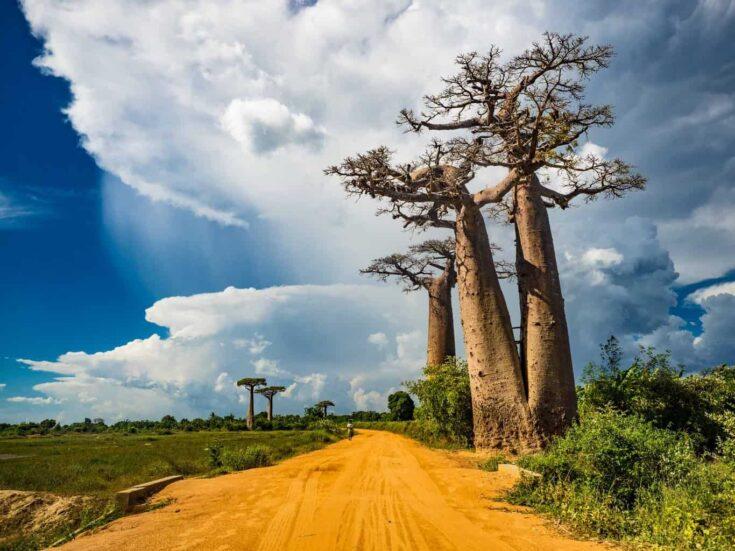 A National Road (R8) in western Madagascar