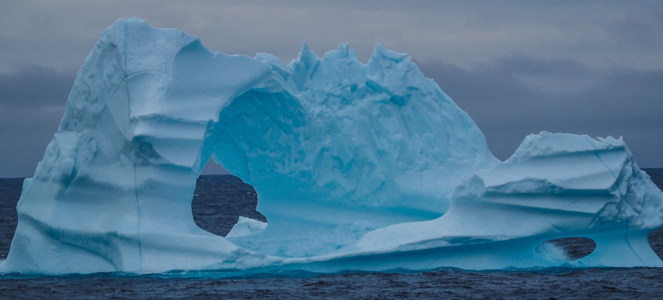One of many thousands of icebergs floating around