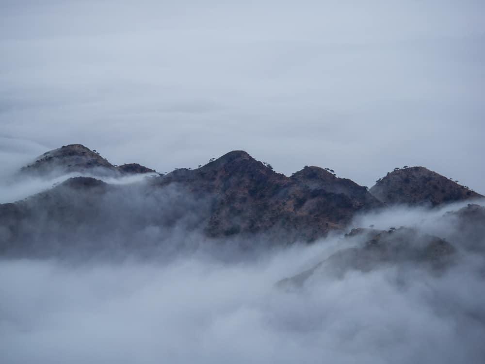 Qoahito valley. in south Eritrea