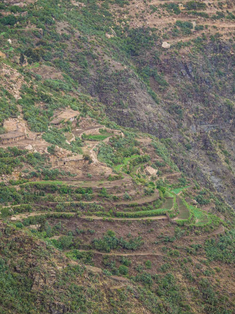 Eritrea Qohaito Canyon