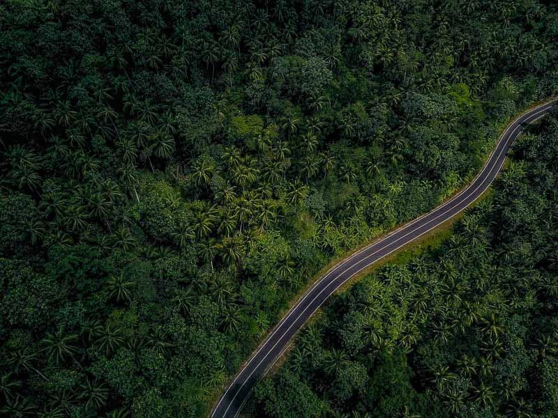 The road goes through an untouched forest in sao tome west africa