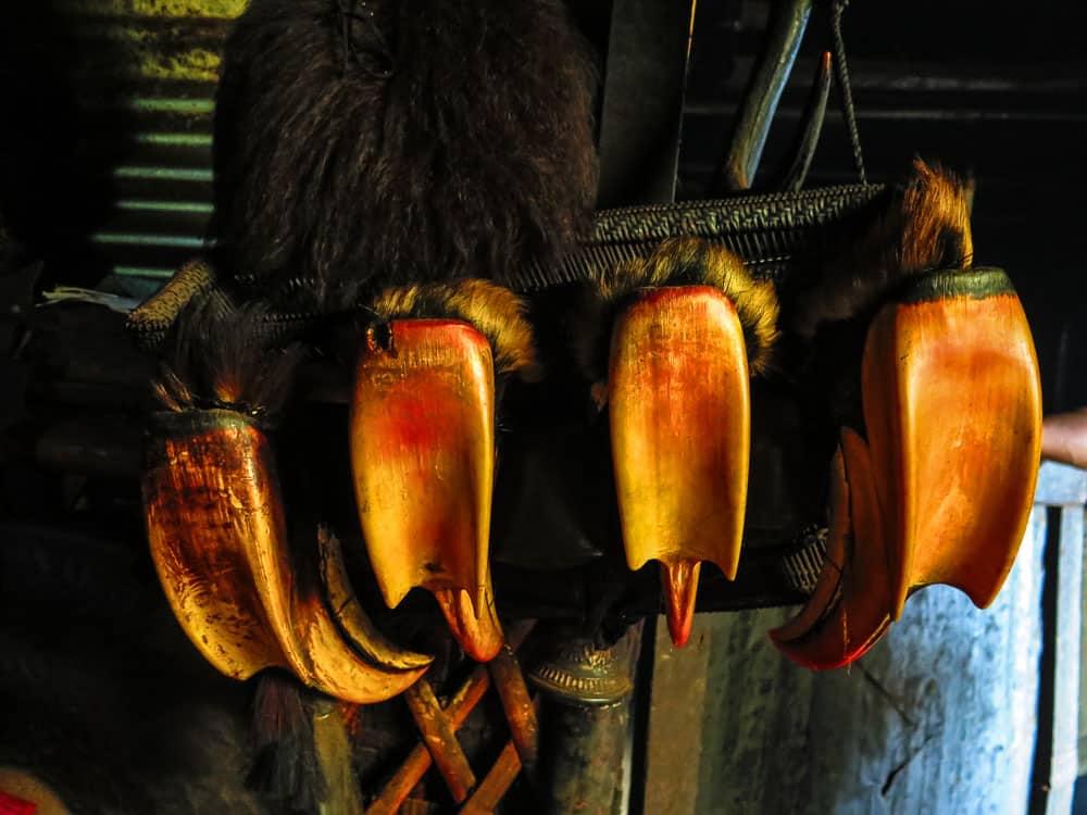 hornbill beaks nagaland