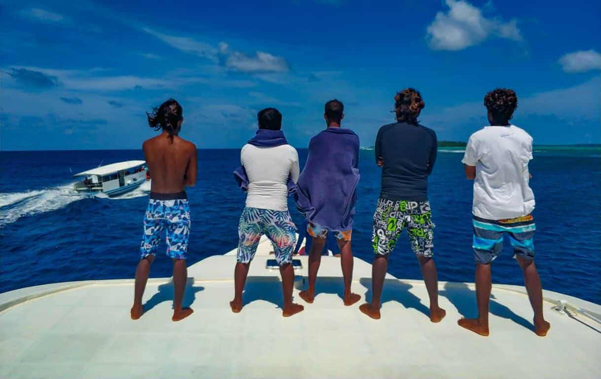 looking for whale shark in the Maldives