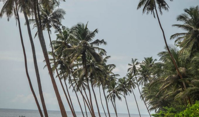 Road Trip along the northern part of Sao Tome & Principe