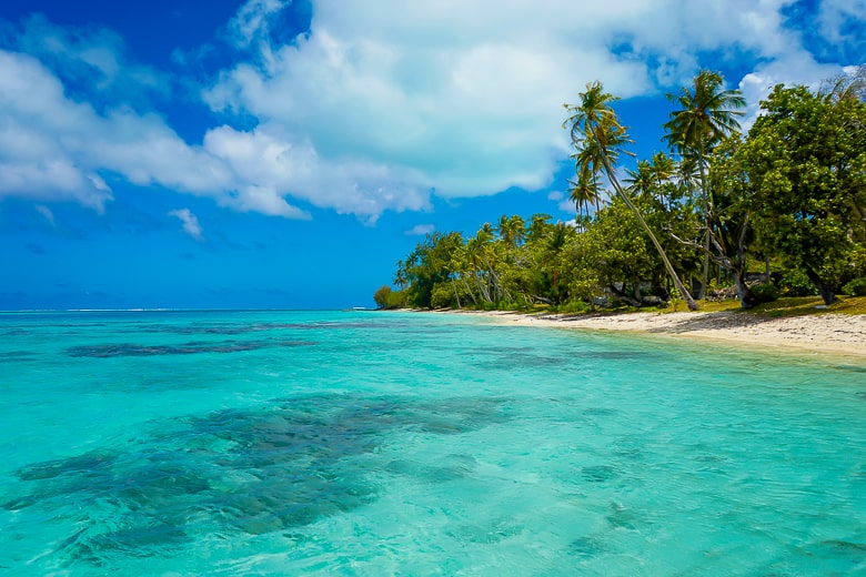 Visiting French Polynesia will treat you to what might be the clearest water in the world