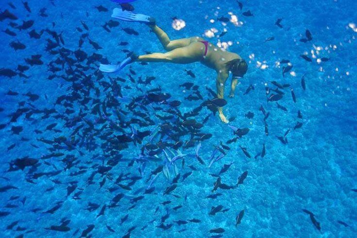 The guide swimming down bora bora