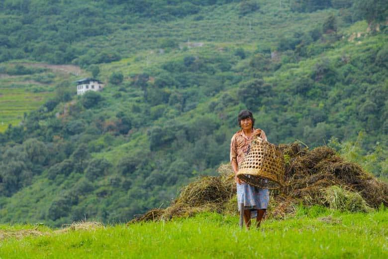 farming in bhutan
