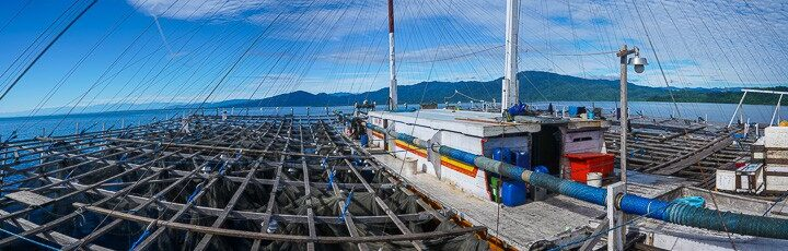 Bagans indonesia west papua fishing boat