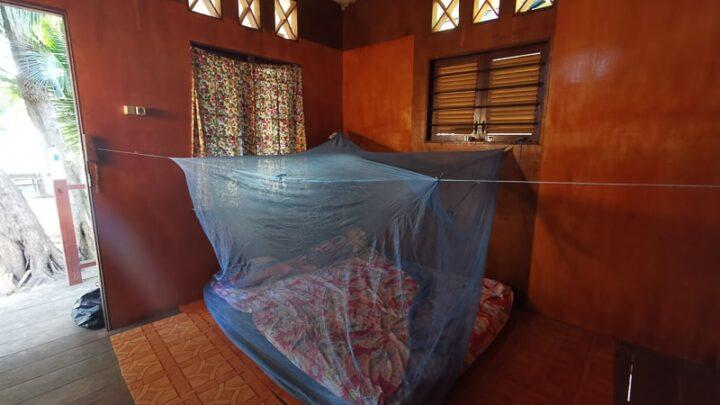 Sowa hut nabire indonesia