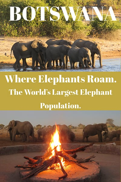 Botswana best place to see elephants in the world