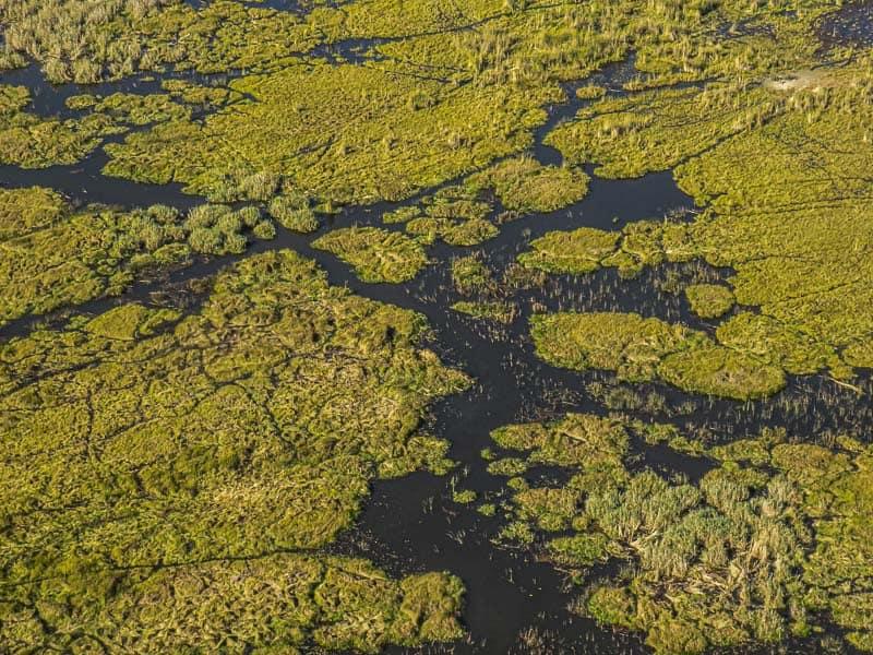 Getting around the Okavango Delta.