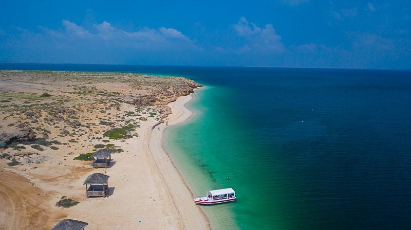 farasan island, saudi arabia, red sea