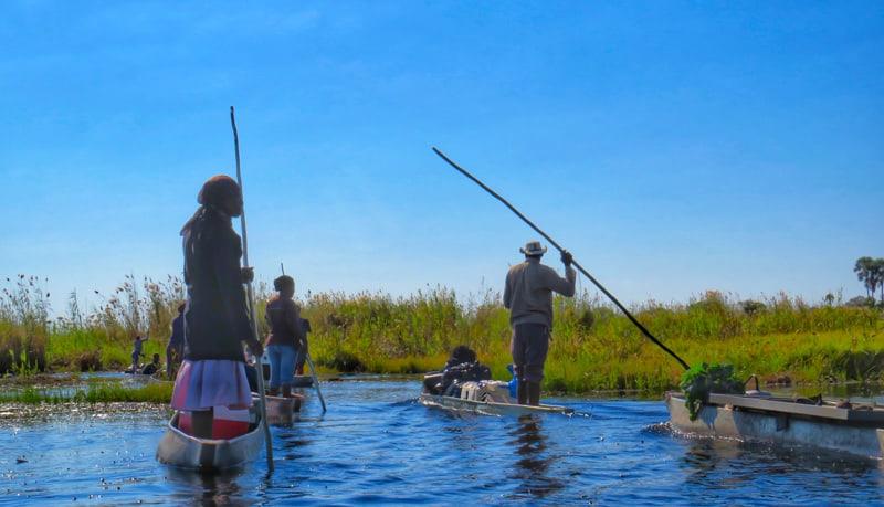 traveling the delta with Makoro , wodden canoes. Botswana