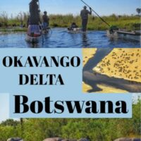 Travel Guide to Okavango Delta safari in Botswana