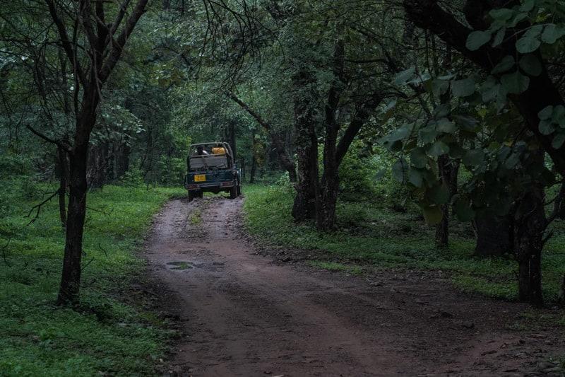Ranthambhore National Park India rajashtan