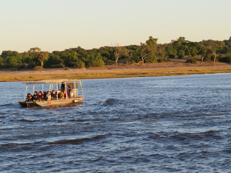 you can also go on safari down the river with a boat