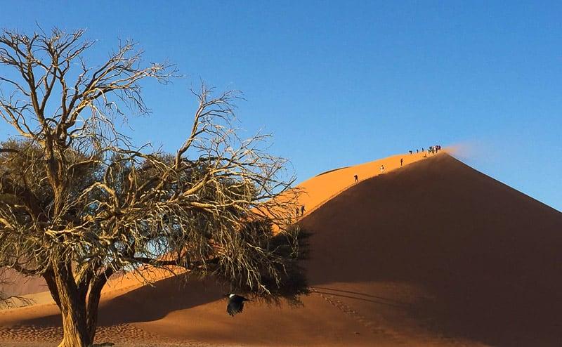 Sossusvlei Намибия 5 причин, по которым Намибия должна быть в Вашем списке. Namibia Sossusvlei Dune 45
