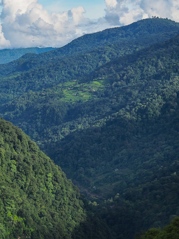 Bhutan Nature travel guide