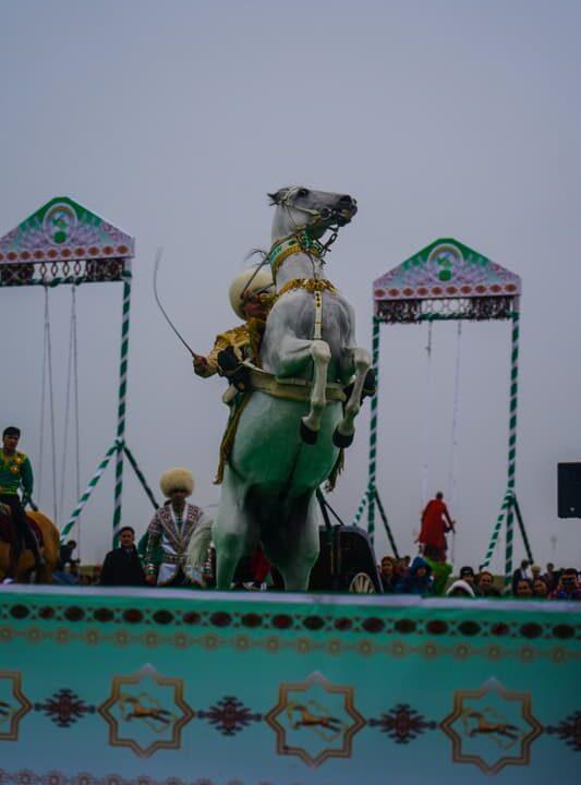 Akhal-Teke Horse  turkmenistan
