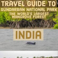 Guide to Sundarbans National Park home to the world´s largest Mangroove forest, diver dolphins and the Royal Bengal Tiger. In east india on the border with Bangladesh.