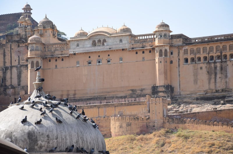 Amber Fort in jaipur Rajasthan