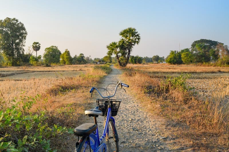 Laos Si Phan Don Cycling Paddy Fields Bicycle