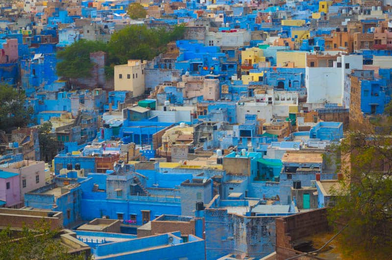 Blue houses in Jodhpur in India