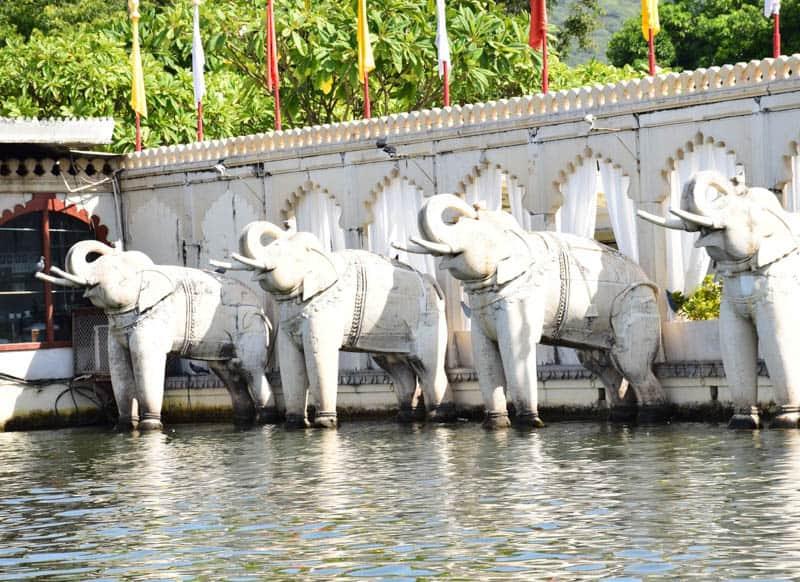 Elephant Udaipur in inida