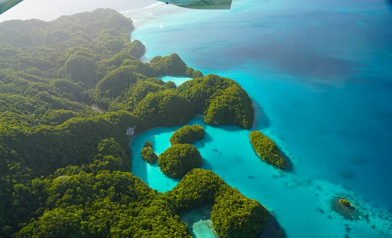 The Milky Way, one of the most popular daytrips to do in Palau, natural mud baths a must do