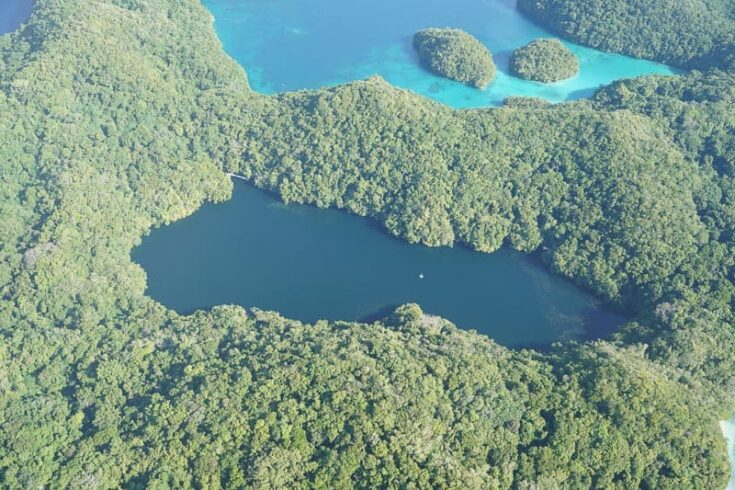 Jellyfish lake in Palau from above