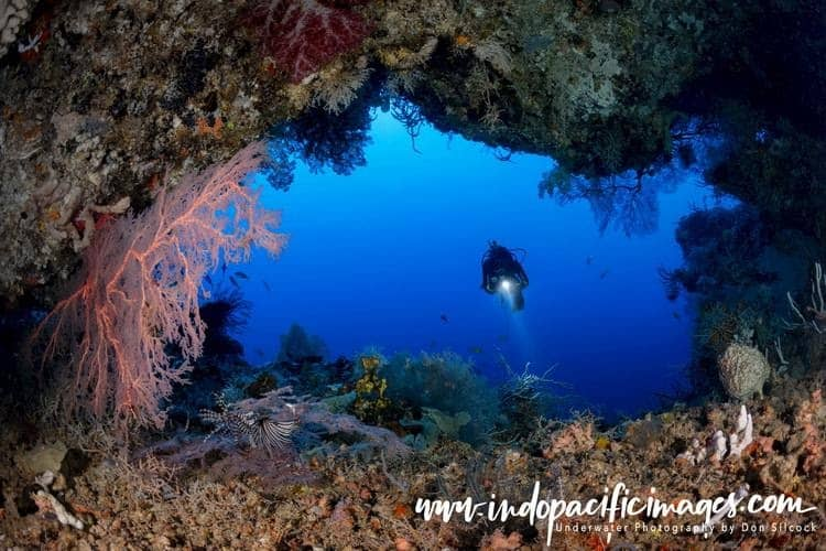 Diving guide to Papua new Guinea