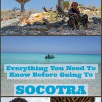 Travel Guide To Socotra the small island out in the Arabic sea which belongs to Yemen.