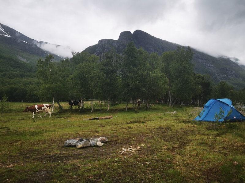 Innerdalen camping