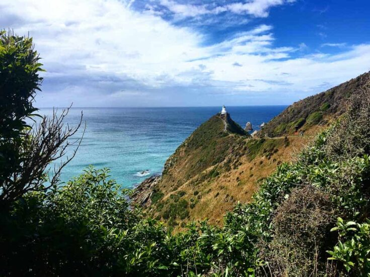 South Island Nugget Point