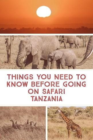 A Complete Guide to Safari in Tanzania