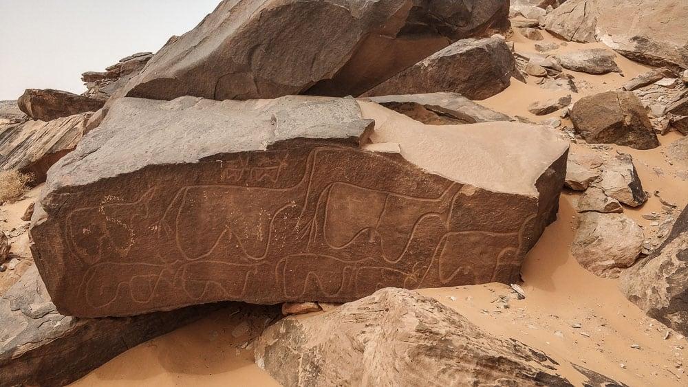 Petroglyphs in Taghit Algeria