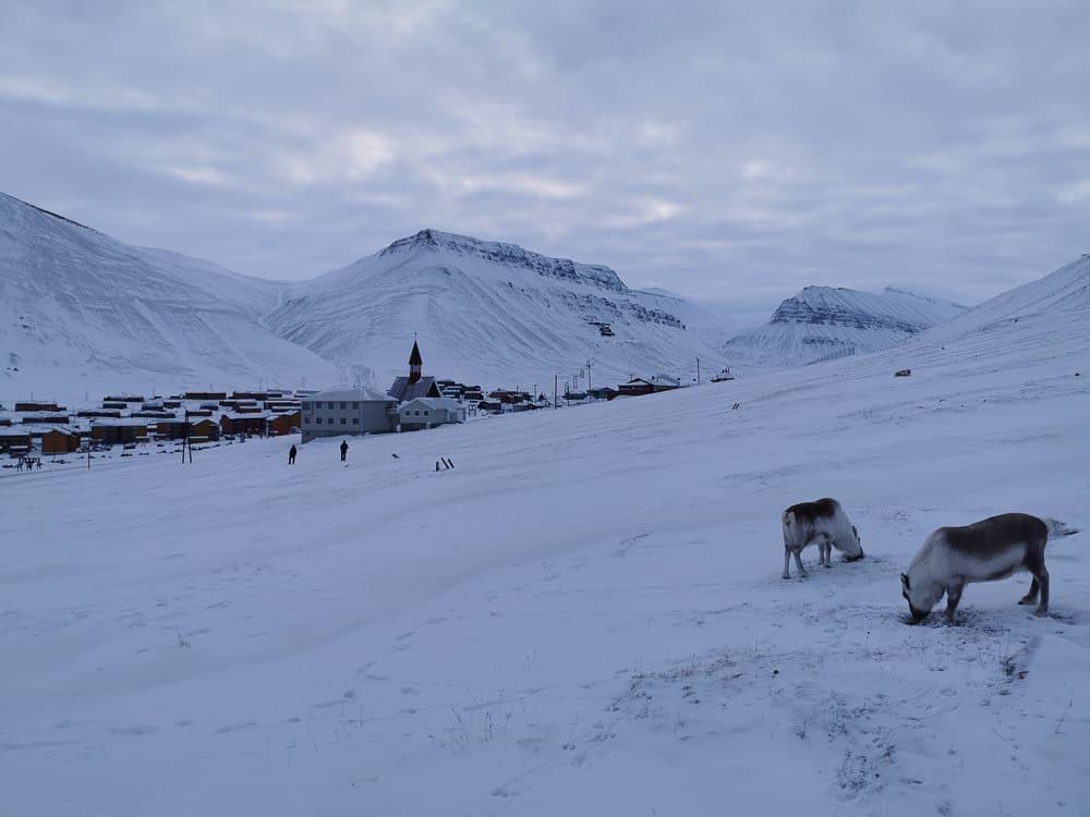 Reinders just outside Longyearbyen
