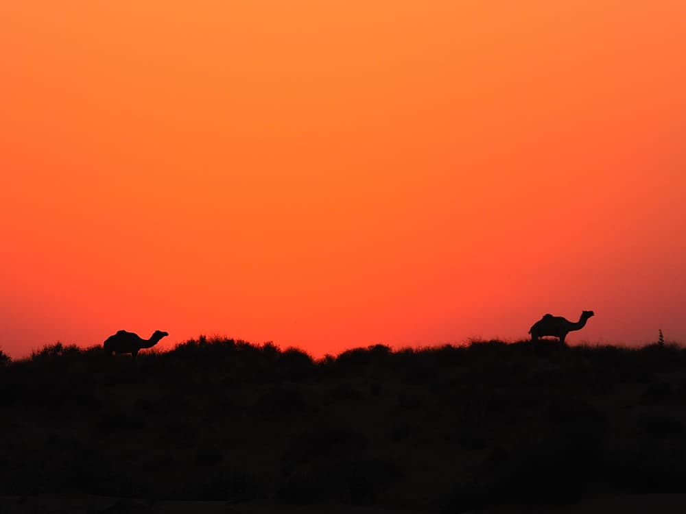 sunset india